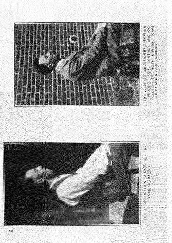 This image is taken from United States Naval Medical Bulletin Vol. 25, Nos. 1-4, 1927