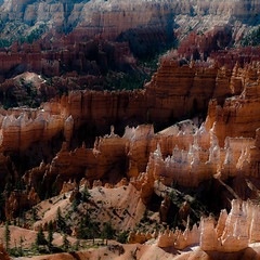 In Canyons 381 (noahbw) Tags: brycecanyon d5000 nikon utah abstract autumn canyon cliffs desert erosion hills hoodoos landscape natural noahbw rock square stone trees