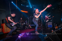 Grey Hairs (Wayne Fox Photography) Tags: grey 1 birmingham august fox 24 52 brum 2019 hareandhounds greyhairs 1570m waynejohnfox waynefoxphotography hareandhoundskingsheath wearediedasder 24august2019 4519984 colossaldowner life uk england music west night john photography hare unitedkingdom live united wayne gig livemusic saturday kingdom nightlife westmidlands hounds birminghamuk hairs midlands thehareandhounds waynefox fullgallery waynejohnfoxhotmailcom infowaynefoxphotographycom httpwwwwaynefoxphotographycom httpwwwflickrcomwaynejohnfox httpstwittercomwaynejohnfox httpstwittercomhareandhounds httpstwittercomgreyhairsband httpwearediedasdercouk httpstwittercomwearediedasder lastfm:event=4519984