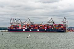 Al Nefud (Maskedmarble) Tags: southampton alnefud ship container dock