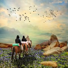 In the morning (jaci XIV) Tags: pedras cavalos pessoas paisagem stones horses people landscape