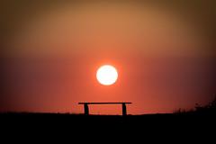 Sunset in Falsterbo / Skanör (bholmbom81) Tags: grass bench skåne sitting place skanör sunset vacation sun sweden bjornholmbom björnholmbom