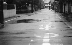 190713_NikonFG20_025 (Matsui Hiroyuki) Tags: nikonfg20 nikonainikkor85mmf20 orientalnewseagulliso100 epsongtx8203200dpi