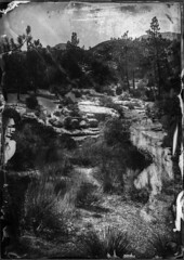Chilao Campground - Dry Plate Collodion (Blurmageddon) Tags: senecaimprovedview 5x7 largeformat dryplatecollodion glassplate glassnegative camping chilao pyrodeveloper bauschlomb5x7tessar1cf45 uvpx collodionnegative