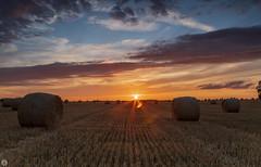 Harvest [FR] (ta92310) Tags: travel 60 oise foin haystack soleil sun picardie picardy harvest recolte france europe longexposure nature cloud nuage summer hautsfrance landscape paysage sunset coudly 2019
