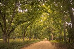 Arthur Road – Zebulon, Georgia