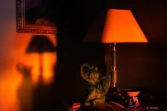 Luces del anochecer (Carpetovetón) Tags: luz colores interior lámpara elefante figura anochecer rojos sombra sonya6000 nikon24mm