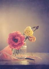 Lisianthus (Ro Cafe) Tags: stilllife flowers lisianthus pink naturallight vintagelens romantic textured helios442 sonya7iii pastelcolors