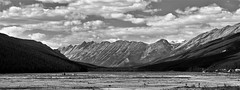 WIDE ANGLE (Rob Patzke) Tags: mountain snow ice tree vast panaramic lx100 panasonic lumix clouds bw monochrome alberta canada rockies sweeping expance blackwhite
