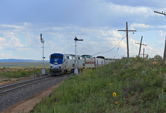 Monsoon Season (GLC 392) Tags: amtk amtrak raton sub subdivision nm new mexico ge p42dc train passenger railway railroad 20 53 4 code line sierra hotel southwest south west chief semaphore monsoon season rain sun flower flowers blades 706 mp