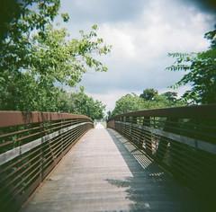 Bridge (Crawford Brian) Tags: oakpark film analog filmphotographyproject kodak ektar100 120 holga plastic plasticcamera toycamera thedarkroomcom illinois forestpark desplainesriver illinoisprairiepath bridge rust
