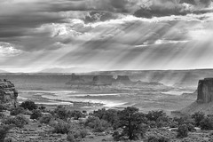 Lightrays in the Canyonlands (Maddog Murph) Tags: canyonlands national park utah arches light rays beams fan storm monsoon stormy tree trees desert arid cloudy moody