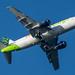 Aloha Air Cargo Boeing 737-300F; N302KH@ITO;27.08.2019