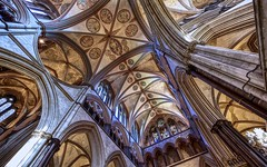 choir ceiling (khrawlings) Tags: salisbury cathedral ceiling choir arches building pillars columns architecture