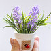 Hand with white bucket with purple flowers