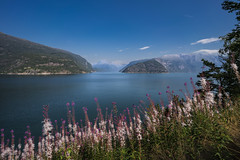 Eidfjord, Norway (StarCitizen) Tags: norway fjord mountains water summer sky clouds