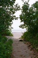 To the sea. (蒼白的路易斯) Tags: beach 永安漁港 fujifilmxtra400 yashicaelectro35gsn 底片攝影 底片