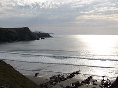 Evening View from Traeth Llyfn towards St Davids Head, Pembrokeshire, Wales, 24 August 2019 (AndrewDixon2812) Tags: abereiddi abereiddy porthgain stdavids tyddewi pembrokeshire wales cymru traeth llyfn bay irish sea evening waves