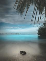 To the Royalton Negril (J a s o n B o l d e r o) Tags: longexposure palmtree jamaica caribbean caribbeansea riunegril bloodybay sonya7ii royaltonnegril sea beach hotel negril riujamaica westjamaica