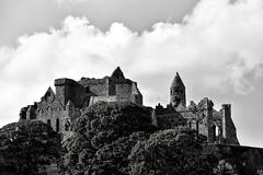 Cashel (sharon.corbet) Tags: cashel tipperary ireland 2019 rockofcashel cathedral roundtower blackandwhite trees
