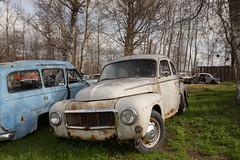 544 (mariburg) Tags: rotten marode ruin decay desolate cars rustycars auto canoneos6d sigma35mm14dghsmart volvo volvo544 544