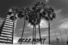 Bell Port-BP83170bw (Rob Blok / BLOK PHOTO) Tags: spain travel building palm trees architecture nikon fx 1735mm blackandwhite blokphoto robblokphotography robblokfotografie