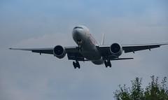 DSC01721 (K.D_aviation) Tags: oneworld qatar starwars aviation airbus airport a330 a319 a321 a320 ana japan airserbia airtransat lufthansa brussels brussel boeing b777 tap iberia hainan canada aireuropa aircanada icelandair