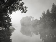 Morgennebel an der Wörnitz - Plate 1 (StefanB) Tags: tree fog germany deutschland mood treescape ries schwaben 2019 em5 1235mm nebel baum stimmung wörnitz flus munningen