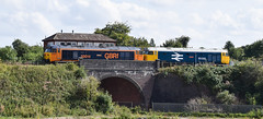 50007 + 50033 (John T Donohoe) Tags: severn valley railway gbrf br blue large logo