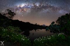 Piton de l'Eau (DanielKHC) Tags: reunion iledelareunion pitondeleau milkyway astrophotography galaxy stars sky pond water reflections flowers nikon d850 nikkor16mmf28fisheye volcano
