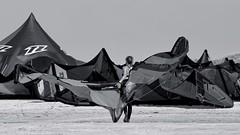 The Queen of Dragons | Wings (picsessionphotoarts) Tags: schwarzweiss blackandwhite spo beachphotography germany deutschland nikon nikonfotografie nikonphotography nikond850 nordsee stpeterording snapshot lazydays northsea onthebeach beach amstrand menschen people menschenamstrand afsnikkor200500mmf56eedvr schnappschuss kite surfer 169 widescreen