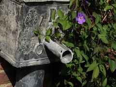 IMG_6177 (belight7) Tags: stoke poges memorial garden uk stokepoges