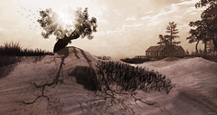 Solace of the Soul (FlashMe Photography) Tags: sl secondlife landscape water summer painting seasons monochrome sepia bw blackandwhite soul2soul