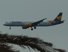 D-ATCA on final approach for RWY 03 (Ibirdball) Tags: condor airbus a321211 datca lanzarotearrecife ace gcrr