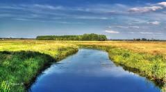 Goleniow's riparians (Wojttek) Tags: landscape zachodniopomorskie poland