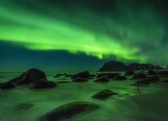 Uttakleiv aurora (Lukasz Lukomski) Tags: aurora northernlights utakleiv lofoten longexposure landscape beach lukaszlukomski norway nikond7200 sigma1020 rocks water reflection green