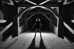 Feel like a Samurai (ste_he) Tags: sony sonyalpha a99ii ilca99m2 sigma2470 nacht night licht light schweiz switzerland luzern lucerne brücke bridge bw black white schwarz weiss samurai katana
