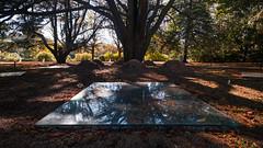 F8153 ~ In the Park (Teresa Teixeira) Tags: porto park serralves trees mirror teresateixeira summer shadows