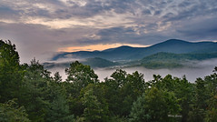 Misty Morning (mevans4272) Tags: mountains mist trees forest morning clouds