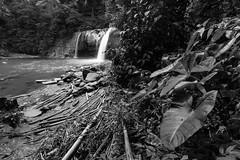 嶺腳瀑布 Lingchiao waterfall (yuchiaisme) Tags: 2019 yuchiachuang waterfall taiwan 嶺腳 平溪線 nikon photography 台灣 臺灣 bw bnw