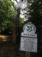 IMG_6169 thomas gray field with his monument , next to st giles church (belight7) Tags: national trust field memorial uk bucks stoke poges summer england heritage stokepoges