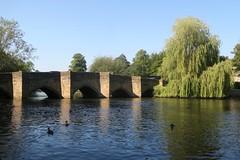 Bakewell, England (nature chief) Tags: uk bakewell derbyshire peakdistrict nationalpark riverwye ピークディストリクト イギリス