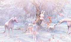 Lil Bunny flies away :))) (Exobiology_SL CLUBs) Tags: luanes magical world luanesmagicalworld unicorn unicorns rainbow unicornparty love like unicornlover unicornio handmade s unicorncake pink art mermaid unicornlove cute unicornlovers unicornios mylittlepony likeforlike target unicornstuff kawaii summer pdc rt nails fun n artist disney party darts cake glitter horse unicornlife magic littlepony pony flickr kids pastel fashion unicornvibes pulpenunicorn happybirthday unicornpower lol bajuanakimport onesie iloveunicorns piyamaunicorn rnio jualunicorn adventure moneywitch fullmoon brujasofinstagram happy wealthywitch richwitch fairies sparkle enchantress hoodoo rootwork energy magia magicalgirl selflove