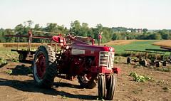 farmall 350 (bluebird87) Tags: tractor farmall 350 film dx0 c41 epson v800 jobo kodak ektar nikon f5