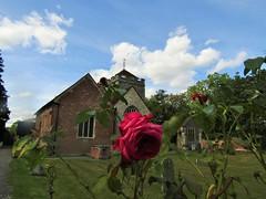 IMG_6167 (belight7) Tags: st giles roses church stoke poges memorial garden uk england bucks stokepoges
