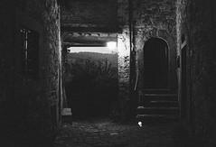 il passaggio (michele.palombi) Tags: luce tuscany crepuscolo 3200asa film35mm analogicshot greveinchianti montefioralle laporta