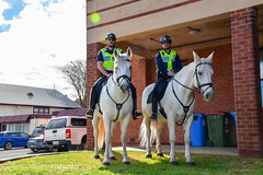 South Australia Police | Mounted Operations (emergencyservicesadl) Tags: police cops cop policecar holden ford mitsubishi sapol southaustraliapolice adelaide thebarton southaustralia