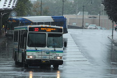 Norwalk Transit District (WHEELS) 2004 Orion VII 07.502 #154 on Route 10 (MTA3306) Tags: