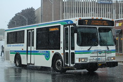 Norwalk Transit District (WHEELS) 2004 Orion VII 07.502 #162 on Route 7 (MTA3306) Tags: