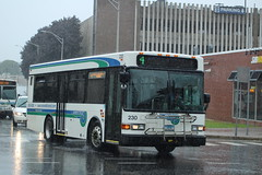 Norwalk Transit District (WHEELS) 2010 Gillig Advantage 29' #230 on Route 4 (MTA3306) Tags:
